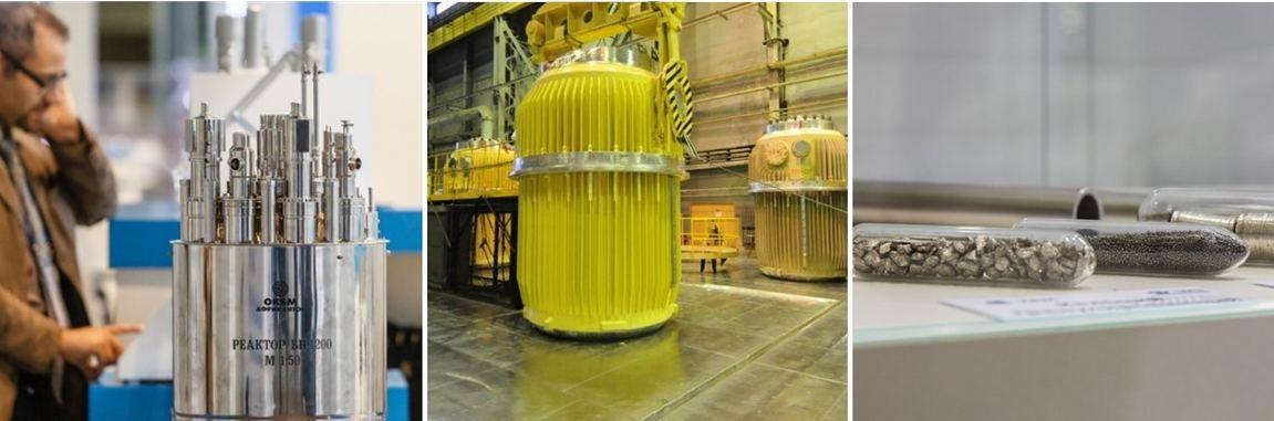 Развитие российско-европейских образовательных проектов в области перспективных ядерных технологий